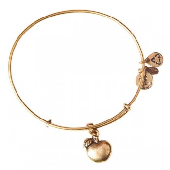 Alex And Ani Apple of Abundance Charm Bracelet Bracelets