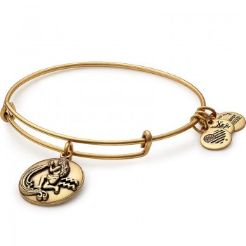 Alex And Ani Aquarius Charm Bangle Bracelets