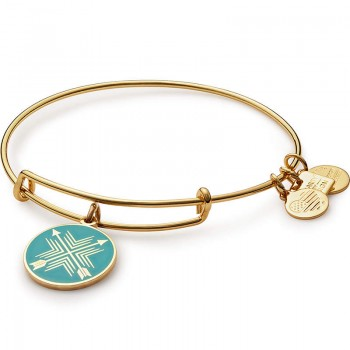 Alex And Ani Arrows of Friendship Charm Bangle | Best Buddies International Bracelets
