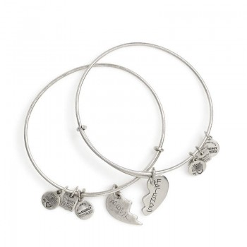 Alex And Ani Best Friends Set of 2 Charm Bangles | American Heart Association Jewelry Sets