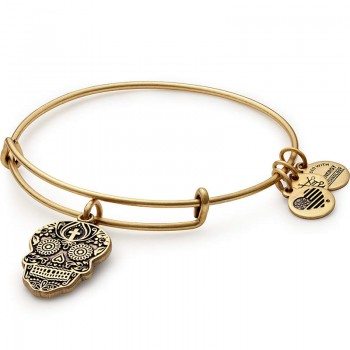 Alex And Ani Calavera Charm Bangle Bracelets