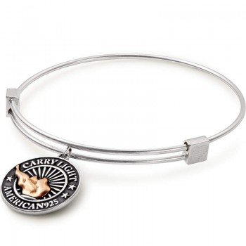 Alex And Ani Charm Bracelet | LIBERTY COPPER CARRY LIGHT Bracelets