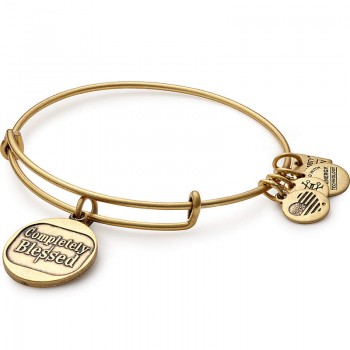 Alex And Ani Completely Blessed Charm Bangle | Blessings in a Backpack Bracelets