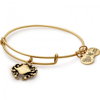 Alex And Ani Crab Charm Bangle Bracelet Bracelets