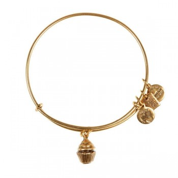 Alex And Ani Cupcake Charm Bangle | Race to Erase MS Bracelets