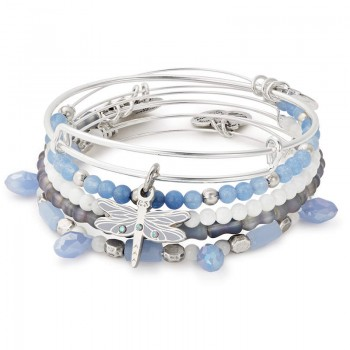 Alex And Ani Dragonfly Set of 5 Bracelets