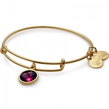 Alex And Ani February Birthstone Charm Bracelet Bracelets