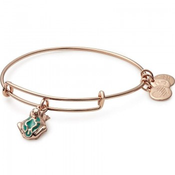 Alex And Ani Frog Prince Charm Bangle Bracelet Bracelets