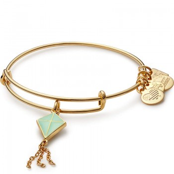 Alex And Ani Green Inspiration in Flight Charm Bangle | Flying Kites Bracelets
