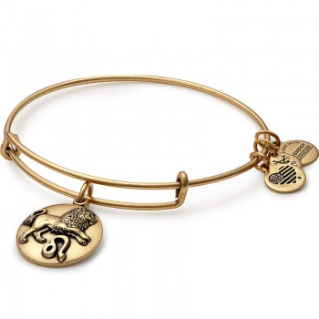 Alex And Ani Leo Charm Bangle Bracelets