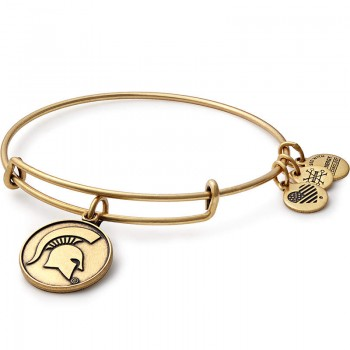 Alex And Ani Michigan State University Charm Bangle Bracelets