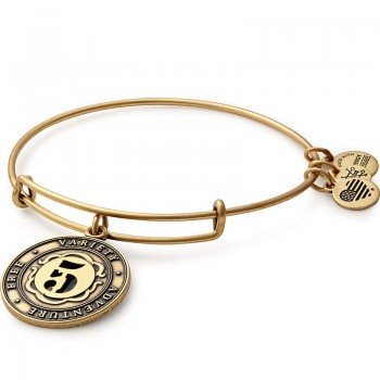 Alex And Ani Number 5 Charm Bracelet Bracelets
