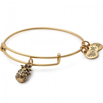Alex And Ani Pineapple Charm Bangle - Bracelets