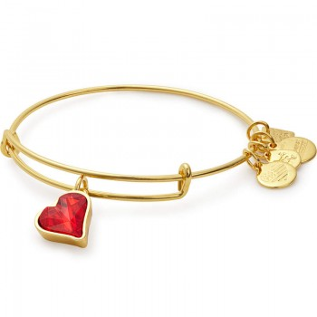 Alex And Ani (PRODUCT)RED Heart of Strength Charm Bangle Bracelets