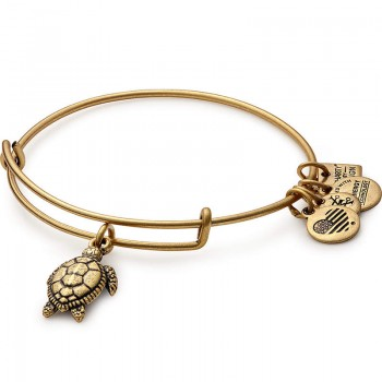 Alex And Ani Sea Turtle Charm Bangle | Project Common Bond Bracelets