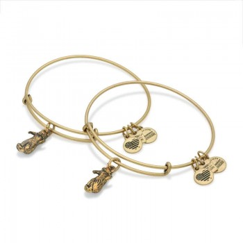 Alex And Ani Side By Side Charm Bangles | JDRF Jewelry Sets