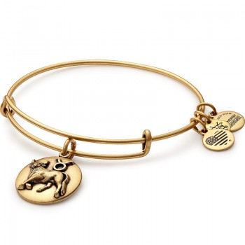 Alex And Ani Taurus Charm Bangle Bracelets