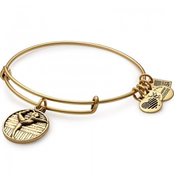 Alex And Ani Team USA Gymnastics Charm Bangle Bracelets