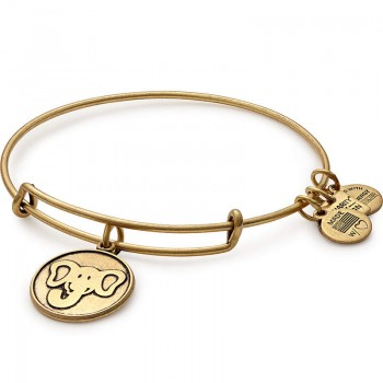 Alex And Ani The Elephant Charm Bangle | Friends of Jaclyn Bracelets