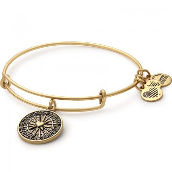 Alex And Ani True Direction Charm Bangle Bracelets