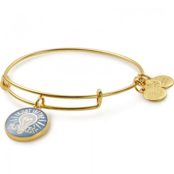 Alex And Ani Trust the Process Charm Bangle Bracelets