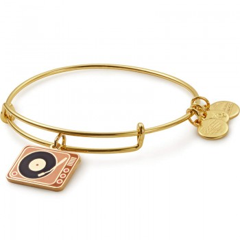 Alex And Ani Tune In Color Infusion Charm Bangle Bracelets