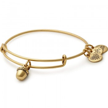 Alex And Ani Unexpected Blessings Charm Bangle Bracelets