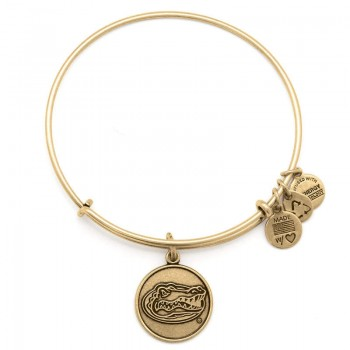 Alex And Ani University of Florida Charm Bracelet Bracelets