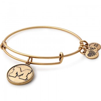 Alex And Ani University of Michigan Charm Bangle Bracelets