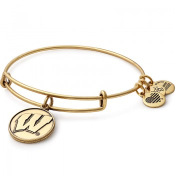 Alex And Ani University of Wisconsin Charm Bangle Bracelets