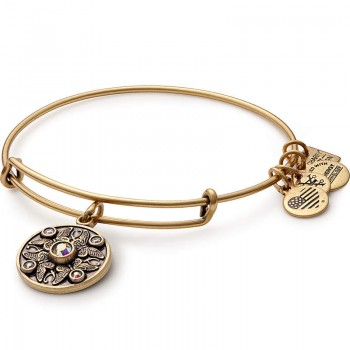 Alex And Ani Wings of Change Charm Bangle | American Stroke Association Bracelets