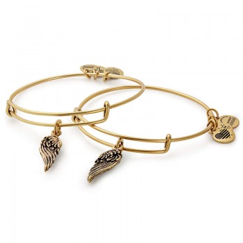 Alex And Ani Wings Set of 2 Charm Bracelets Jewelry Sets